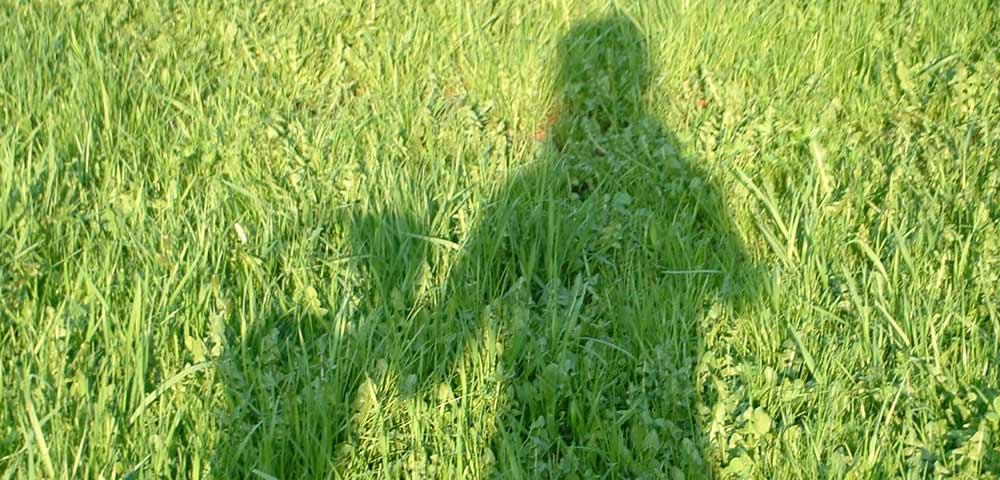 Kräuterrundgang Heimatblume, ein menschlicher Schatten auf Gras