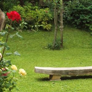 Rote und gelbe Rosen und eine Ruhebank aus einem Holzbalken