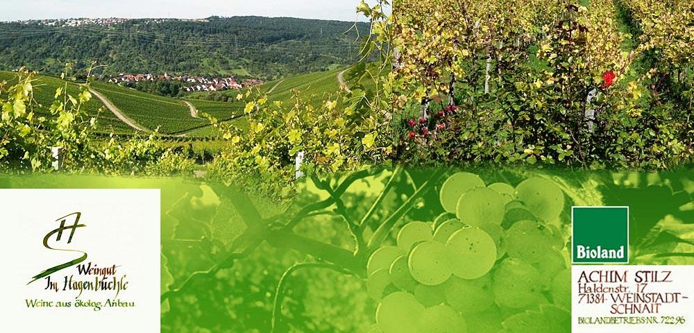 Weinprobe Achim Stilz